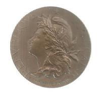 Médaille , SOCIETE NATIONALE DES CONFERENCES POPULAIRES , 1900 , Frais Fr 2.95 E - Professionals / Firms