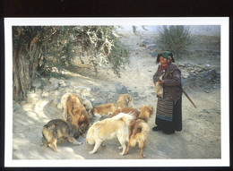 CPM Neuve TIBET Grand Mère Tibétaine  ( 1000 Ex. ) - Tibet