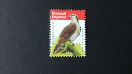 BUZIN - Belgique : Timbres Numéro 4090 Réimpression 02-03-2013 Papier Gommé Blanc FSC Pas Repris Au COB. Etat XX. - 1985-.. Oiseaux (Buzin)