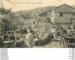 WW PHILIPPEVILLE. Embarquement Des Moutons En Algérie - Professions
