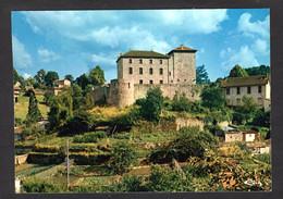 Vue Pas Courante - OLLIERGUES (63 P-de-D.) Le Château ( Cim N° 3.23.78.0282 ) Voir L'Etat - Olliergues