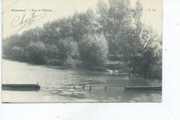 Boitsfort Watermael Vue De L'Etang ( Pêcheur ) - Watermael-Boitsfort - Watermaal-Bosvoorde