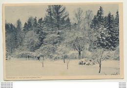 AK  Alexandersbad Im Fichtelgebirge Parkpartie Kuranstalt 1919 - Ohne Zuordnung