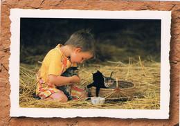 3 Chats Et Garcon -cat And Child- Jongen Met 3 Poesjes -katzen Kind - Gatti