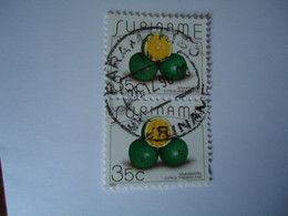 SURINAME  USED    STAMPS  PAIR    FRUITS WITH  POSTMARK - Suriname