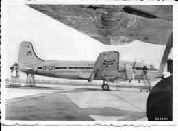 Aviation - Avion Douglas DC-4'S De La Sabena - Aéroport De Bruxelles - 1946-....: Modern Era