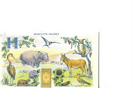 THEME   ANE      ET ANIMAUX  CHOUETTE  HIPPOPOTAME/ TORTUE ... BICUIT OLIBET ALPHABET A COLORIER 11 X 6.5 CMS - Otros