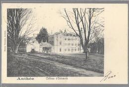 Anthée : Château D'Ostemrée     VENTE DE MA COLLECTION PRIX SYMPAS - REGARDEZ MES OFFRES - Zonder Classificatie