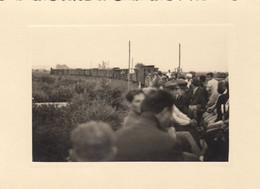 Samobor - Train ( Samoborcek ) Cca.1940 - Croacia