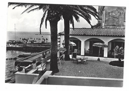 9047 - SANTA MARINELLA ROMA VILLETTA DELLE PALME 1950 CIRCA - Other Cities