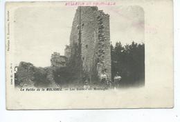 Falaen Ruines De Montaigle - Onhaye