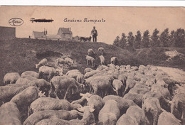 TOURNAI / ANCIENS REMPARTS / LE BERGER - Tournai