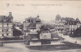 De Haan, Coq Sur Mer, Vue Panoramique De La Station Du Tram (pk78479) - De Haan