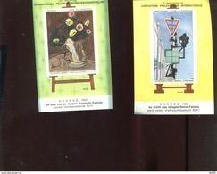 Belgie Erinno E109 E110 OCB 2.50€ RR Painting Nellens Stephenson Permeke Flowers - Commemorative Labels