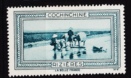 VIGN162 COCHINCHINE RIZIERES Vignette De Collection LA BELLE FRANCE 1925s H-V Erinnophilie - Tourismus (Vignetten)