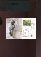 Belgie 1999 2817/18 Pavillion Austria Manneken Pis Birds Insects Bruphila 1999 Herdenkingskaart - Herdenkingskaarten