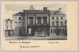 Soignies : Hôtel De Ville, Nels     JE VENDS MA COLLECTION  PRIX SYMPAS REGARDEZ LES OFFRES - Soignies
