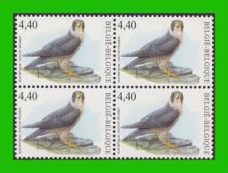 BUZIN - 3751** Faucon Pélerin / Slechtvalk - TRFO2 - 1985-.. Birds (Buzin)