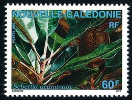 NOUV.-CALEDONIE 1995 - Yv. 692 **   Faciale= 0,50 EUR - Flore : Sebertia  ..Réf.NCE26400 - Nuovi