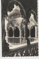 ESPAGNE : Vallalolid Muséo Escultura Patio Del Colegio : édit. Garcia Garrabella N° 31 - Valladolid