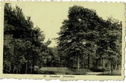 Lanaken - Dennenbos - Lanaken