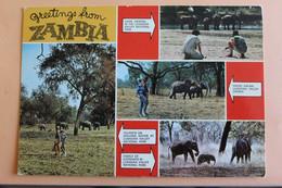 Greetings From Zambia - Multivues - Zambia