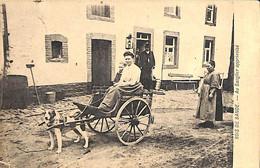 Bois De Bande - Au Sanglier Apprivoisé (attelage Canin Animée 1905 RARE) - Nassogne