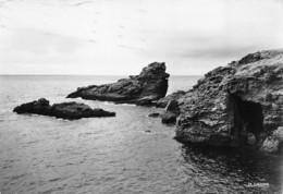 Belle Ile En Mer (56) - Sauzon - Le Rocher Du Chien - Belle Ile En Mer