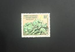 TAAF Yvert N° 11 ** Neuf Sans Charnière - Unused Stamps