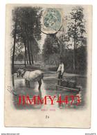 CPA - VINEUIL En 1905 - Sous Bois - Un Attelage Avec Des Barriques ( Arr. De Châteauroux 36 Indre ) - Autres Communes