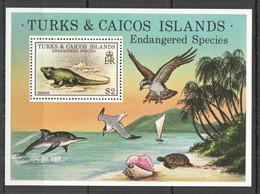 RR686 1979 TURKS & CAICOS IS. ENDANGERED SPECIES BIRDS MARINE LIFE MICHEL BL14 1BL MNH - Autres