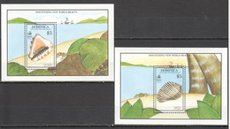 VV548 1990 DOMINICA FAUNA MARINE LIFE SEASHELLS DISCOVERING NEW WORLD BEAUTY 2BL MNH - Coquillages
