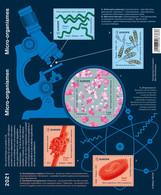 België Belgium 2021 - Micro-organismen / Micro Organisms - Science - Microscope - Research - Nuevos