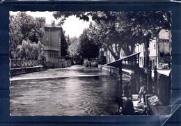 84. L'isle Sur Sorgue. Les Bords De La Sorgue. Cpsm Petit Format - L'Isle Sur Sorgue