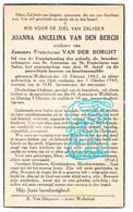 DP Joanna Angelina Van Den Bergh ° Wolfsdonk Langdorp Aarschot 1862 † 1943 X Joannes Fr. Van Der Borght - Imágenes Religiosas