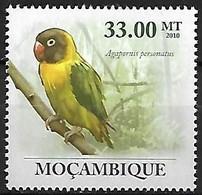 Mozambique - MNH ** 2010 :  Yellow-collared Lovebird  -  Agapornis Personatus - Papegaaien, Parkieten