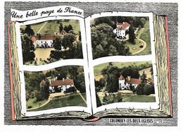 """52 - COLOMBEY LES DEUX EGLISES - Une Belle Page De France - Livre Ouvert - 4 Vues """"La Boisserie"""" (du Général De Gaulle) - Colombey Les Deux Eglises"""