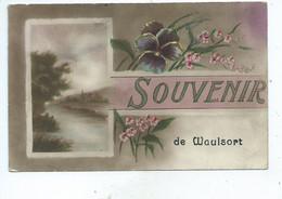 Waulsort Souvenir Cachet De Waulsort - Hastière