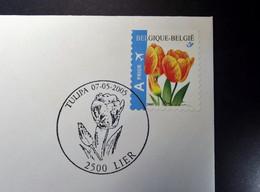 Belgie - Belgique - 2005 - OPB 3406  - Tulip -  1 Enveloppe Afgestempeld   07.05.2005 Lier - Gebraucht