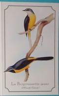 Petit Calendrier De Poche 1996 Oiseau Bergeroonette Jaune - Dobola - Contres Loir Et Cher - Tamaño Pequeño : 1991-00