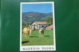 R12/  CASERIO VASCO  VACHE  EUSKAL BASERRIA ESPAGNE PAYS BASQUE    EUROPE - Autres