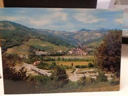 Cartolina Gatta Comune Di Castelnovo Ne Monti Provincia Di Reggio Emilia Panorama - Reggio Nell'Emilia