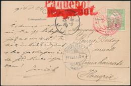 """1914 Képeslap Turul 5f Bérmentesítéssel Piros """"ADRIA / UNGHERESE"""" és """"Paquebot"""" Bélyegzésekkel Algírból Dunaharasztira K - Non Classificati"""