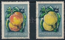 O 1954 Gyümölcs 2Ft A Piros Szín Hiányával + Támpéldány - Non Classificati