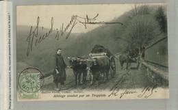 BOUILLON / ATTELAGE CONDUIT PAR UN TRAPPISTE 1905  Edit Florin Coiffeur  (Mars Eur 2021 107 - Bouillon