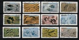 NOUVEAUTÉ 2021 **EMPREINTES D'ANIMAUX ** 12 TIMBRES OBLITÉRÉS - Used Stamps