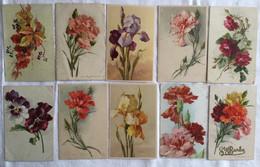 Lot De 10 Cartes-fleurs -Klein -471 480 - Pintura & Cuadros