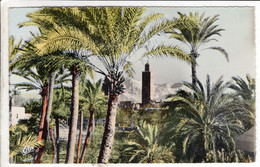 Cpa MAROC MARRAKECH La Palmeraie, La Koutoubia Et L'Atlas - Marrakech