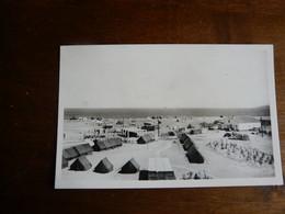 55. ARGELES Sur MER - Le Camping Roussillonais. Vue Générale  Les Tentes Et Le Hall De Réception - Argeles Sur Mer