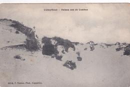 KALMTHOUT / HEIDE / DUINEN AAN DE CAMBUS  1913 - Kalmthout